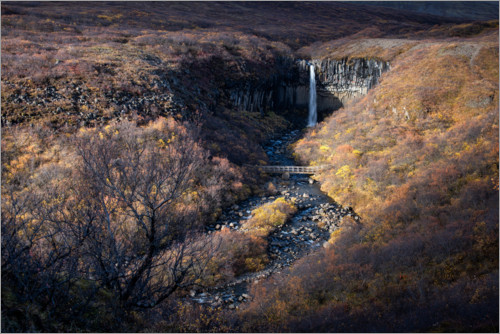 Premium-plakat Svartifoss waterfall in autumn on Iceland