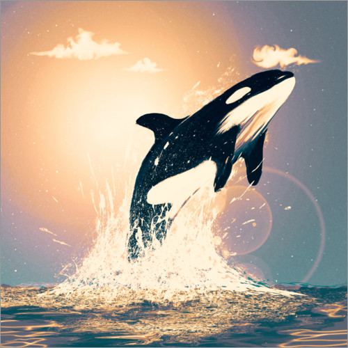 Premium-plakat Orcas can fly