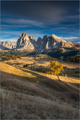 Premium-plakat Sunset on the Alpe di Siusi the Dolomites