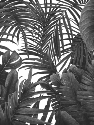 Premium-plakat Tropical jungle in black and white
