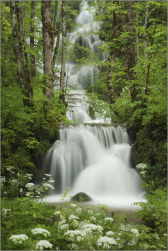 Premium-plakat Waterfall in the forest, France