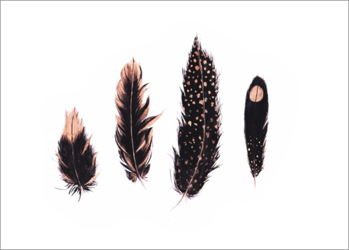 Premium-plakat Ink and rose gold feathers