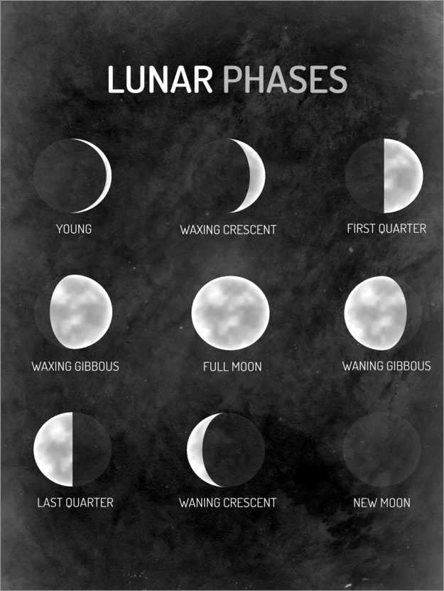 Premium-plakat Moon phases - English