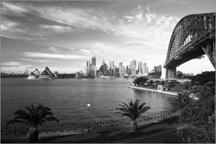 Print på træ  View over Sydney's landmark - David Wall