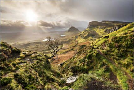 Akrylbillede  Scottish highlands in stormy weather - The Wandering Soul