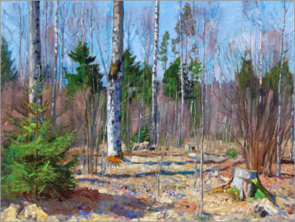 Premium-plakat Spring day at the edge of the forest