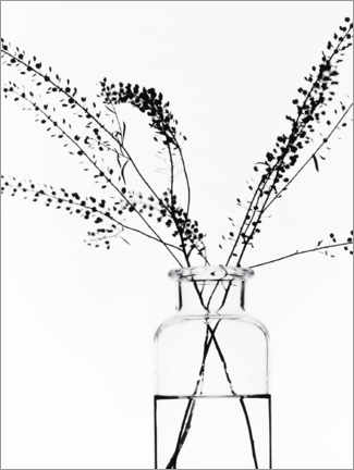 Premium-plakat  Bottle with branches I - Magda Izzard