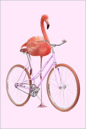 Lærredsbillede  Flamingo Bike - Jonas Loose