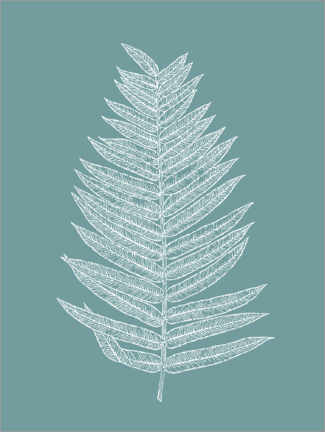 Premium-plakat  Palm leaf botany - apricot and birch