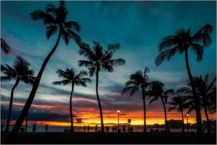 Lærredsbillede  Palm trees in the sunset, Hawaii - Road To Aloha