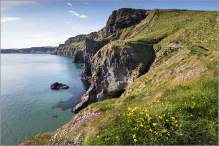 Print på træ  Calm bay in Ireland by the sea - The Wandering Soul