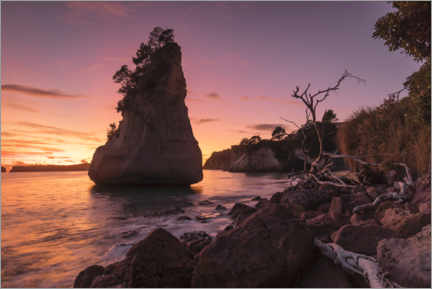 Premium-plakat Cathedral Cove at sunrise