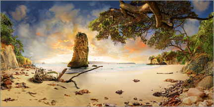 Premium-plakat Cathedral Beach with Te Hoho Rock at sunset