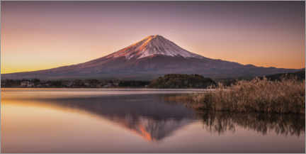 Akrylbillede  Mount Fuji am Tomorrow - André Wandrei