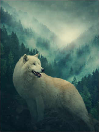 Premium-plakat White wolf in the forest