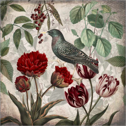Akrylbillede  Vintage starling with tulips - Andrea Haase