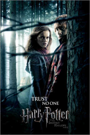Premium-plakat  The Deathly Hallows I - Hermione & Ron