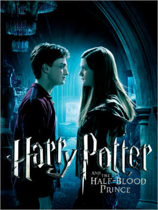 Premium-plakat  The Half-Blood Prince - Harry & Ginny