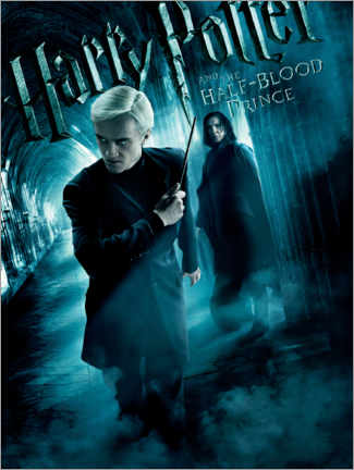 Premium-plakat  The Half-Blood Prince - Draco & Snape