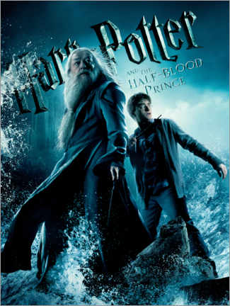 Premium-plakat  The Half-Blood Prince - Harry & Dumbledore