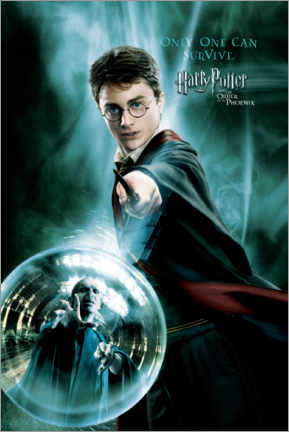 Premium-plakat  The Order of the Phoenix - Harry Potter