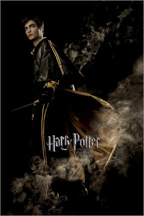 Premium-plakat  The Goblet of Fire - Cedric Diggory