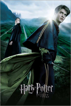 Premium-plakat  The Goblet of Fire - Cedric & Cho Chang