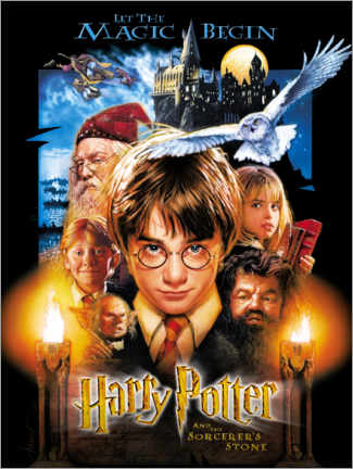 Premium-plakat  Harry Potter and the Sorcerer's Stone