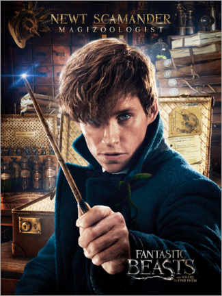Lærredsbillede  Fantastic Beasts and Where to Find Them - Newt Scamander