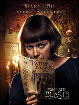 Premium-plakat  Fantastic Beasts and Where to Find Them - Mary Lou Barebone