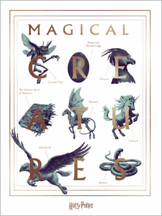 Print på træ  Harry Potter - Magical Creatures