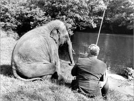Premium-plakat Elephant and human sit together by the river