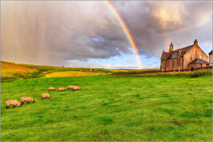 Premium-plakat Meadow with rainbow in Pennan