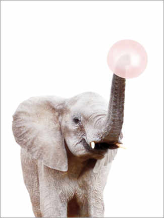 Lærredsbillede  Elephant with Bubble gum - Sisi And Seb