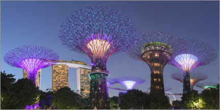 Premium-plakat  Supertrees by night, Singapore - Markus Lange