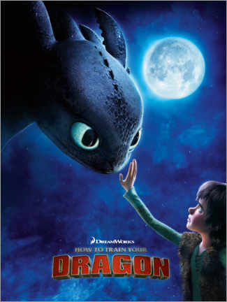 Print på skumplade  How to train your dragon