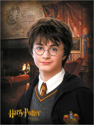 Premium-plakat Harry Potter and the Chamber of Secrets