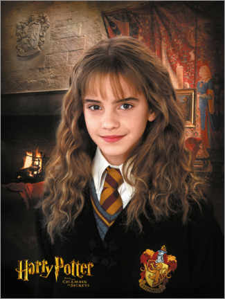 Premium-plakat  Hermione and the Chamber of Secrets