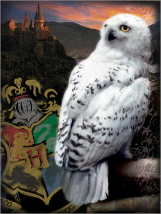 Lærredsbillede  The Half-Blood Prince - Hedwig