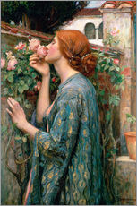 Selvklæbende plakat  The Soul of the Rose - John William Waterhouse