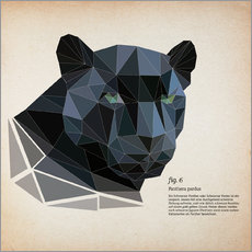 Selvklæbende plakat  fig6 polygon Panther square - Labelizer