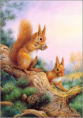 Galleritryk  Pair of Red Squirrels on a Scottish Pine - Carl Donner