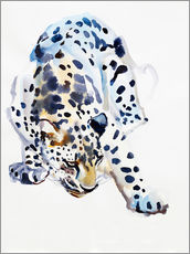Galleritryk  Arabian Leopard - Mark Adlington