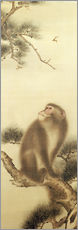 Galleritryk  Monkey watching a dragonfly - Japanese School