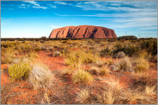 Galleritryk  Ayers Rock in the evening - Matteo Colombo