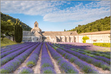 Galleritryk  Famous Senanque abbey with lavender field, Provence, France - Matteo Colombo