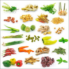 Galleritryk  Vegetable and herb collection