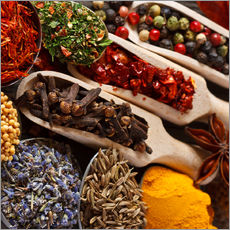 Galleritryk  Colorful spices and herbs