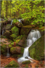 Selvklæbende plakat Waterfall in the forest