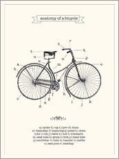 Selvklæbende plakat  Vintage parts of a bicycle anatomy - Nory Glory Prints